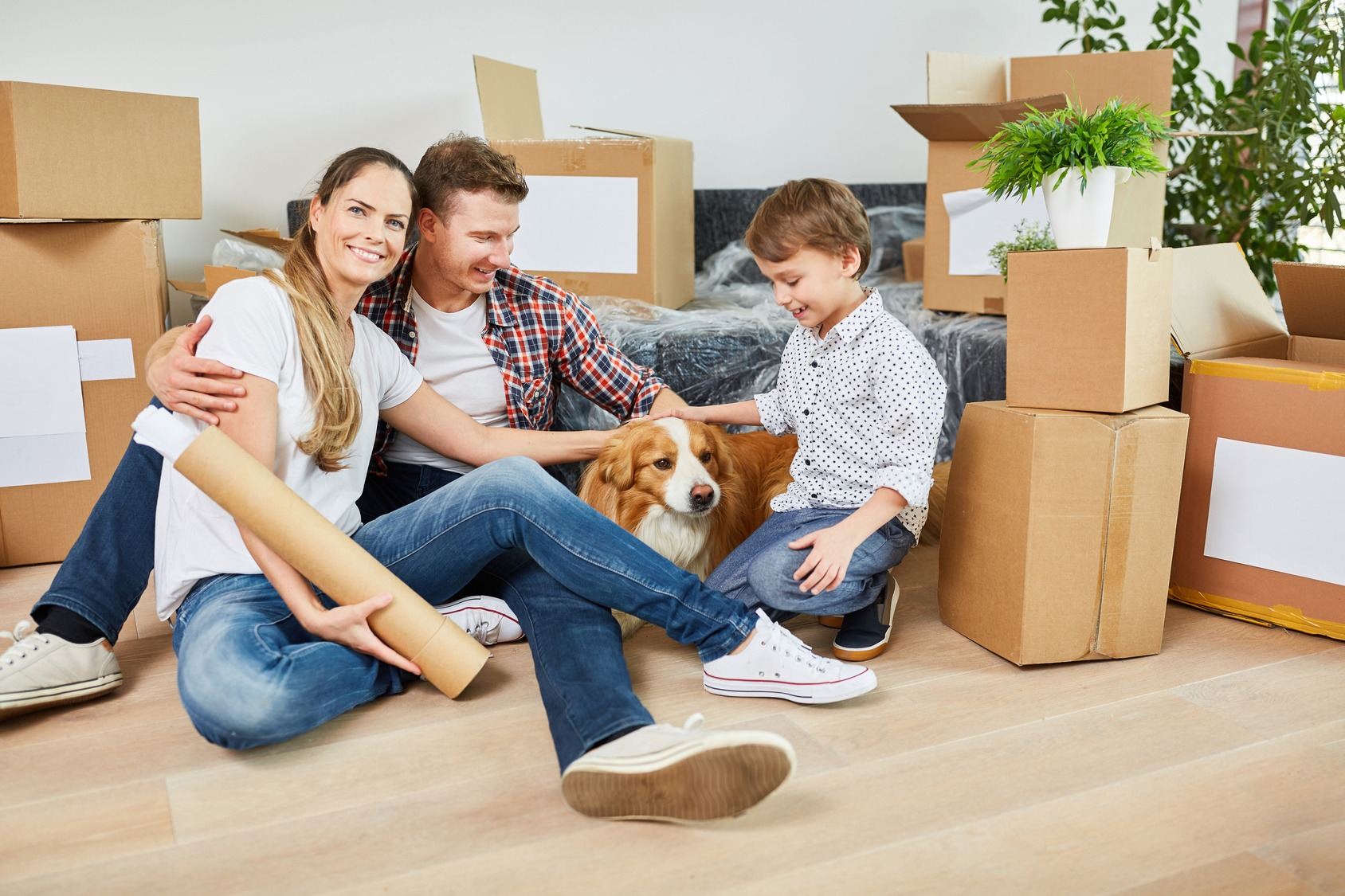 Moving home with pets